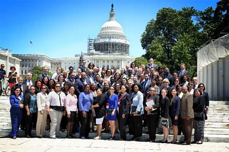 Large group of AAAED members on the steps of the US Capitol